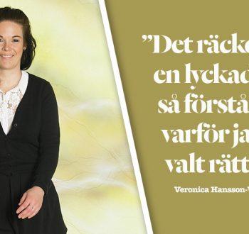 veronica_hansson-_wiking