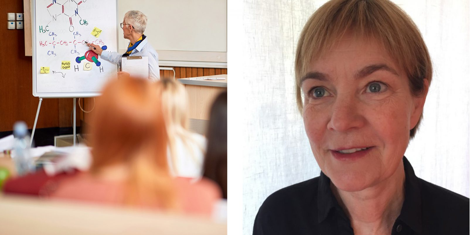 Lärare och elever i klassrum, Gunilla Rist, huvudskyddsombud för LR i Göteborg.